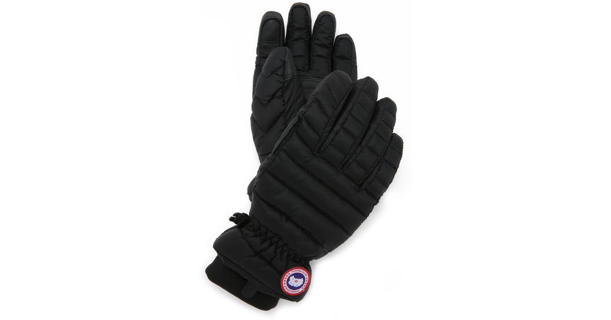 cbfa5c7ff9b1 Canada Goose Womens Lightweight Gloves - Image Of Gloves