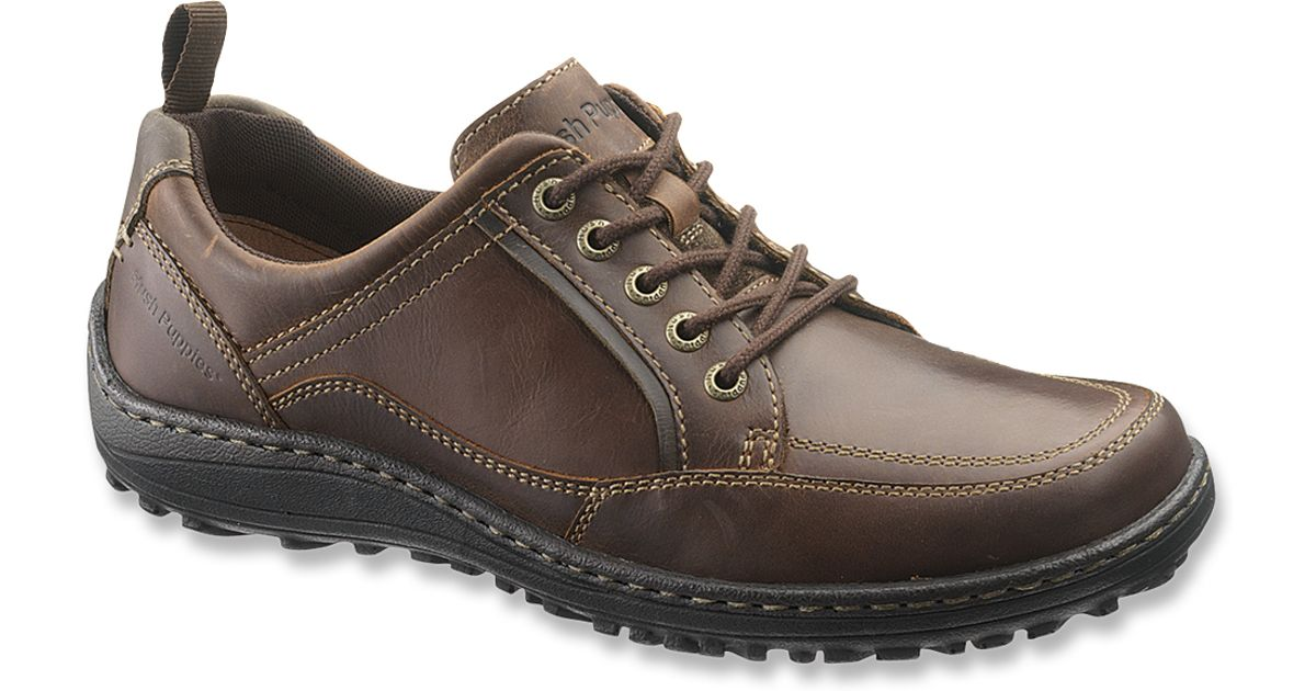 Belfast Oxford Brown Leather Shoes