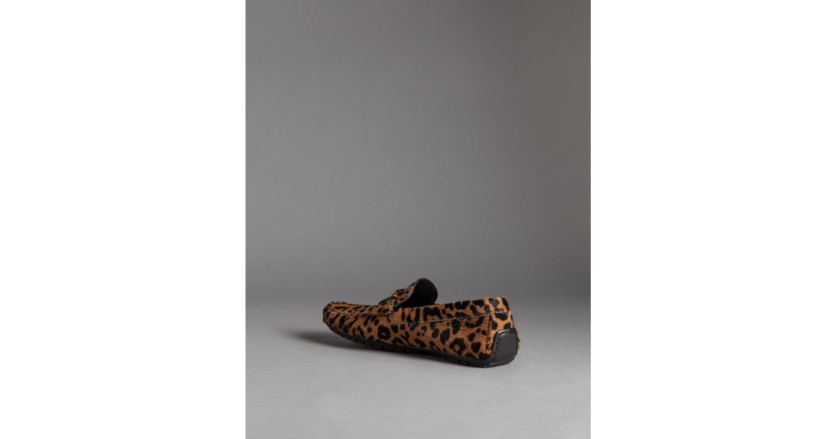 9bdc3b2ded9 Lyst - Dolce   Gabbana Natural Leopard Print Pony Ragusa Driving Shoes for  Men