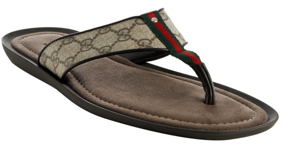 43397fbc72701 Gucci Cocoa Gg Plus Web Thong Sandals in Brown for Men - Lyst