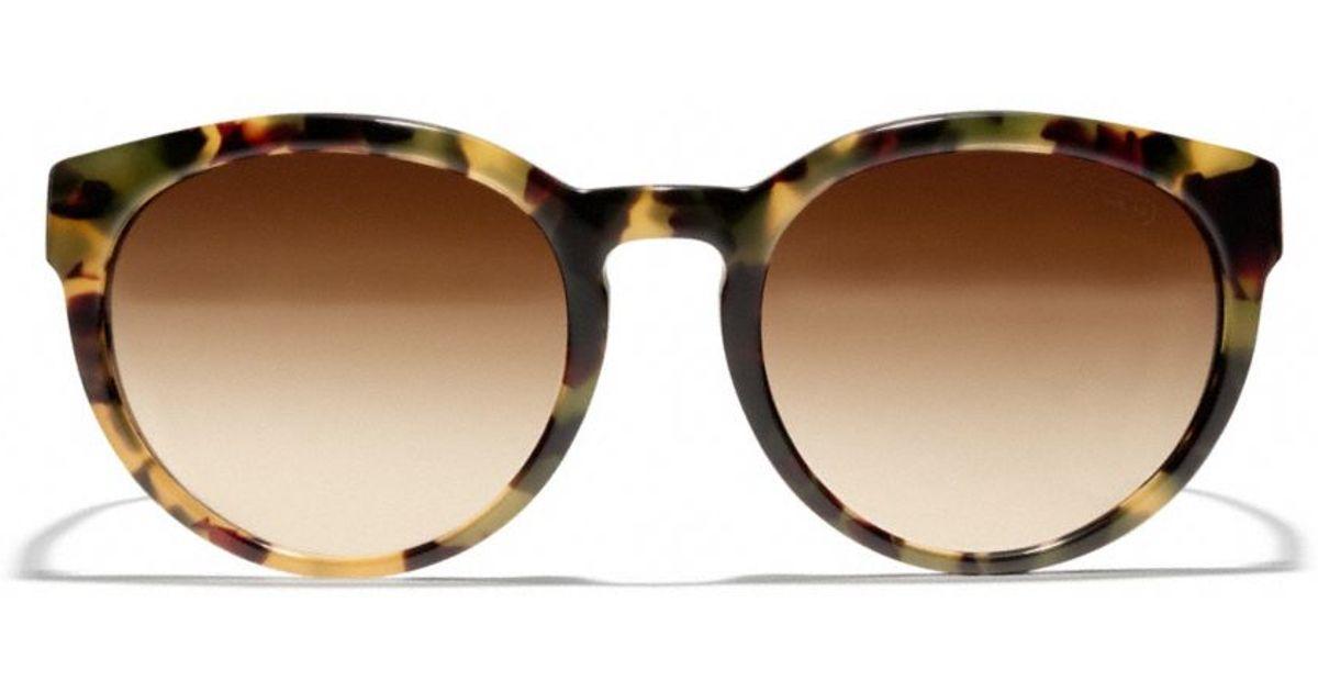 c4528a874e4f ... new zealand lyst coach kylie sunglasses in brown 4b46f 6752e