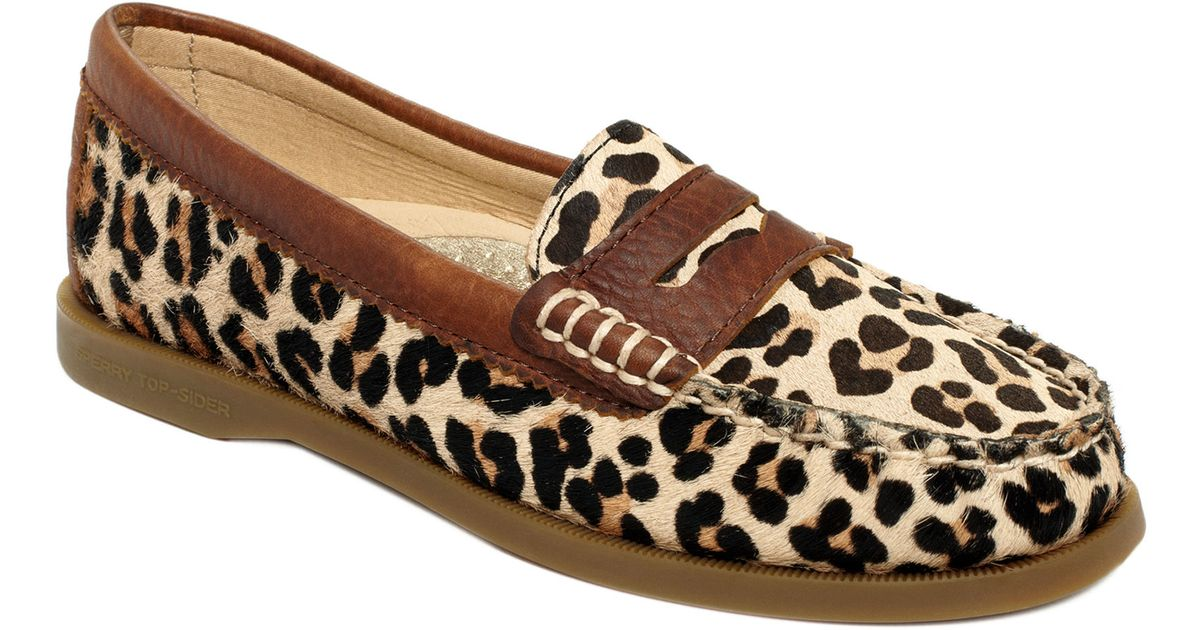 422edaf230b Lyst - Sperry Top-Sider Hayden Penny Loafer Flats in Brown