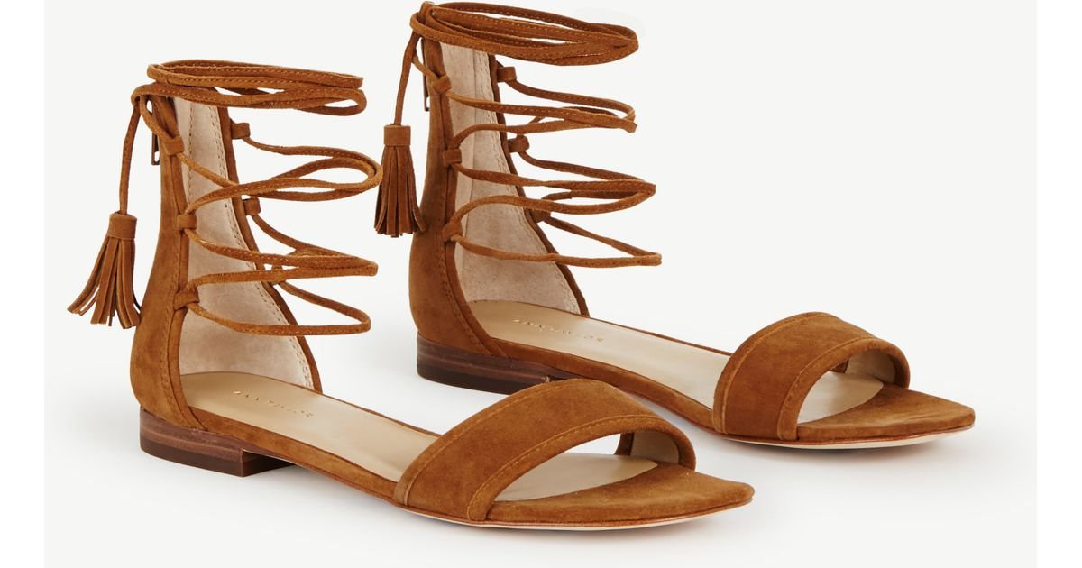 a5ed40dabf1128 Lyst - Ann Taylor Astrid Suede Ankle Wrap Sandals in Brown