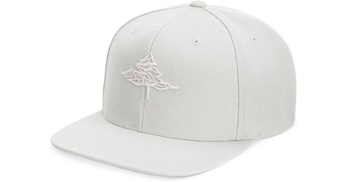 269d169e0cd Lyst - LRG Men s Root Tree Embroidered Snapback Hat in Gray for Men