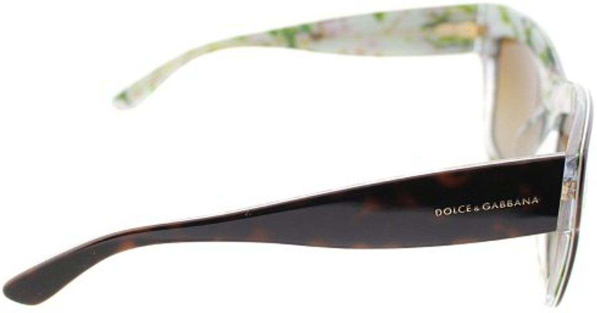 7d9dbc95af5 Lyst - Dolce   Gabbana Dg4231 2841 t5 Havana On Aqua Peach Flowers  Oversized Square Plastic Sunglasses Brown Gradient Polarized Lens in Black