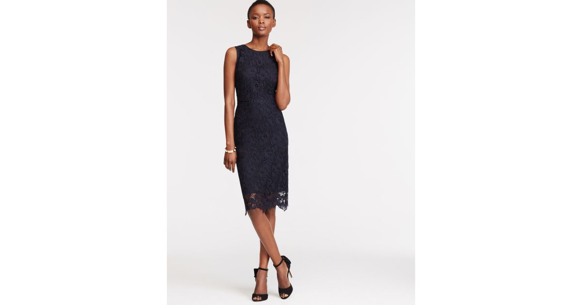 Ann taylor Floral Lace Sheath Dress in Blue | Lyst