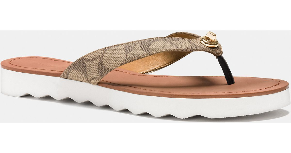 11054bc67f01 Lyst - COACH Shelly Sandal in Natural