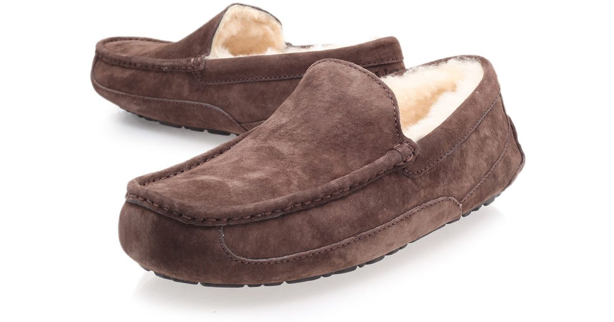 ALARD - Slipper - dark brown