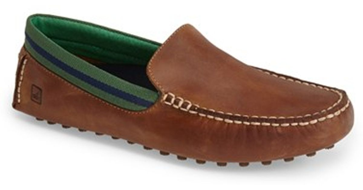 Shoe Stores Hamilton