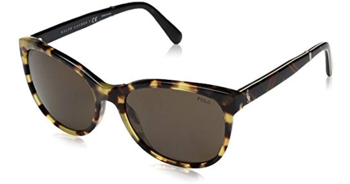 c121347da1e7 Lyst - Polo Ralph Lauren Acetate Woman Wayfarer Sunglasses - Save 17%