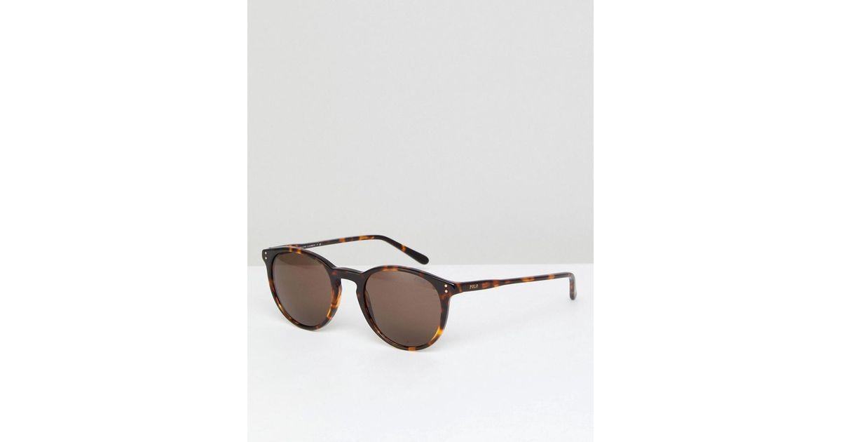 Lyst - Lunettes de soleil rondes motif écaille Polo Ralph Lauren pour homme  en coloris Marron a608c28c8e2e