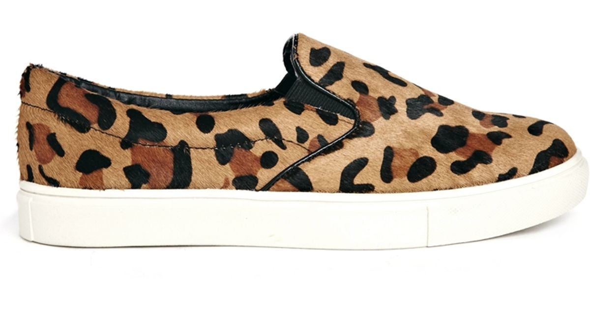 aec3f74b2af8 Steve Madden Ecentric Leopard Slip On Sneakers - Lyst