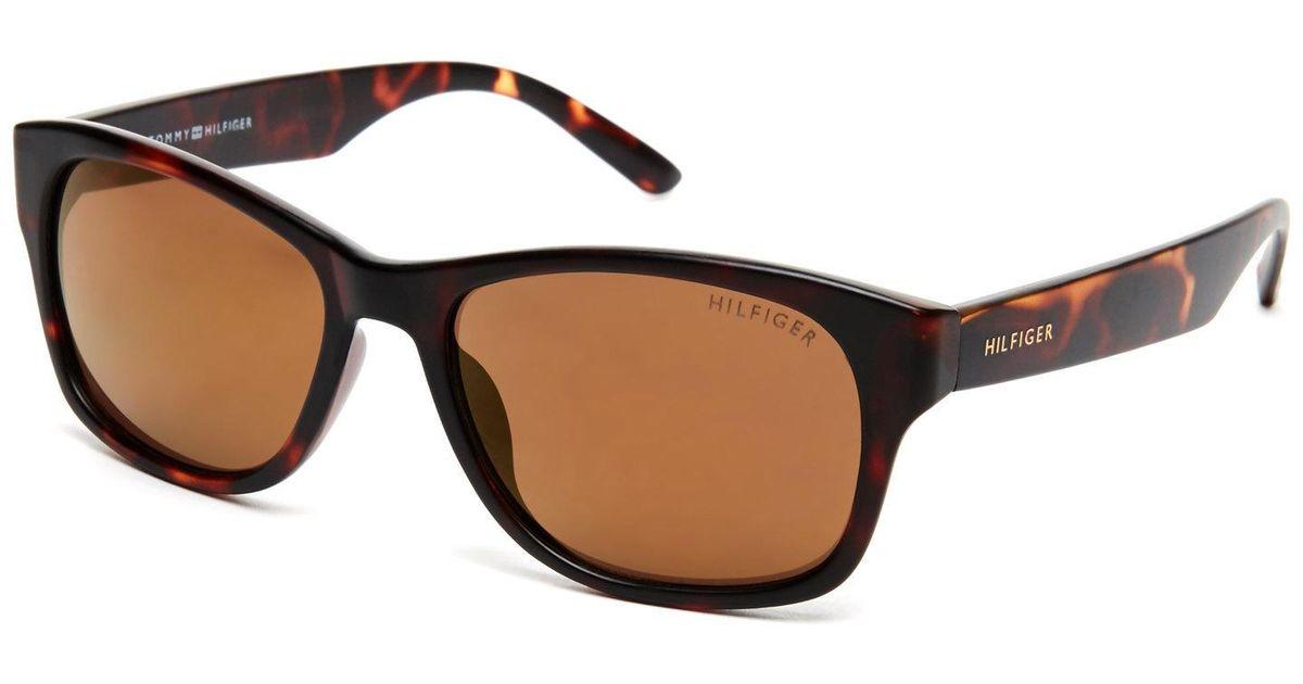 089373d90d0 Lyst - Tommy Hilfiger Tortoiseshell-Look Leo Wayfarer Sunglasses in Brown
