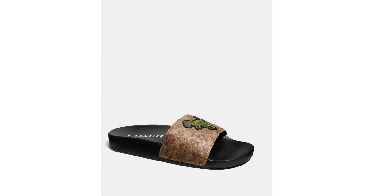 e08c280b1f4 Lyst - COACH Slide With Rexy in Black for Men