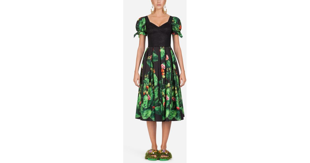 3f980628 Dolce & Gabbana Cactus-print Cotton Dress in Green - Lyst