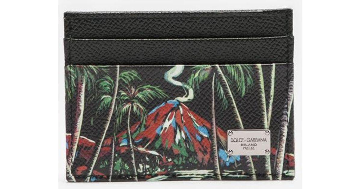Dolce & Gabbana Dauphine card holder qsjCpS
