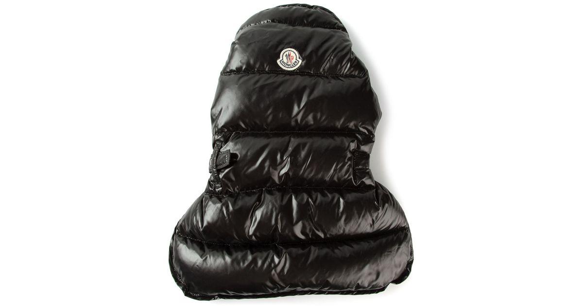 lyst moncler padded dog coat in black rh lyst com