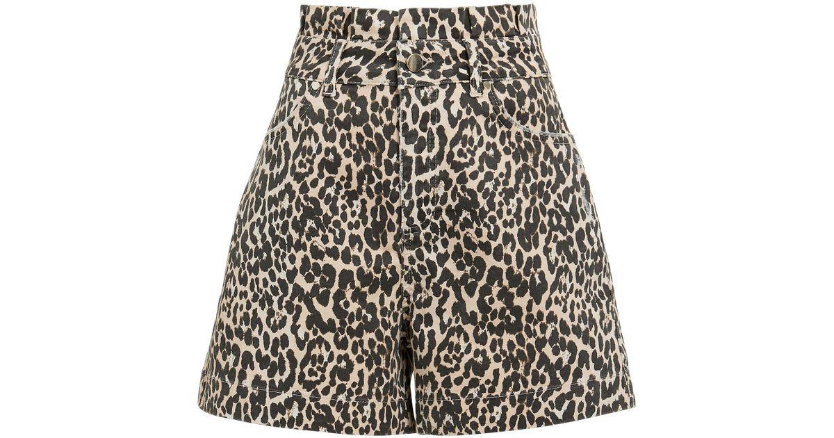 572b40cd4381 Notes Du Nord Kayla Leopard Shorts in Black - Lyst