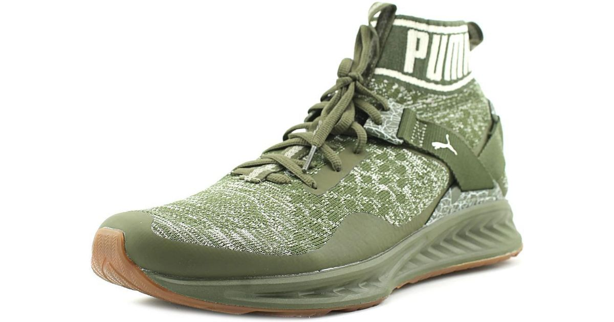 ... wholesale sales 32799 a14a1 Lyst - Puma Ignite Evoknit Hypernature  Sneakers Shoes in Gre ... 664df5298