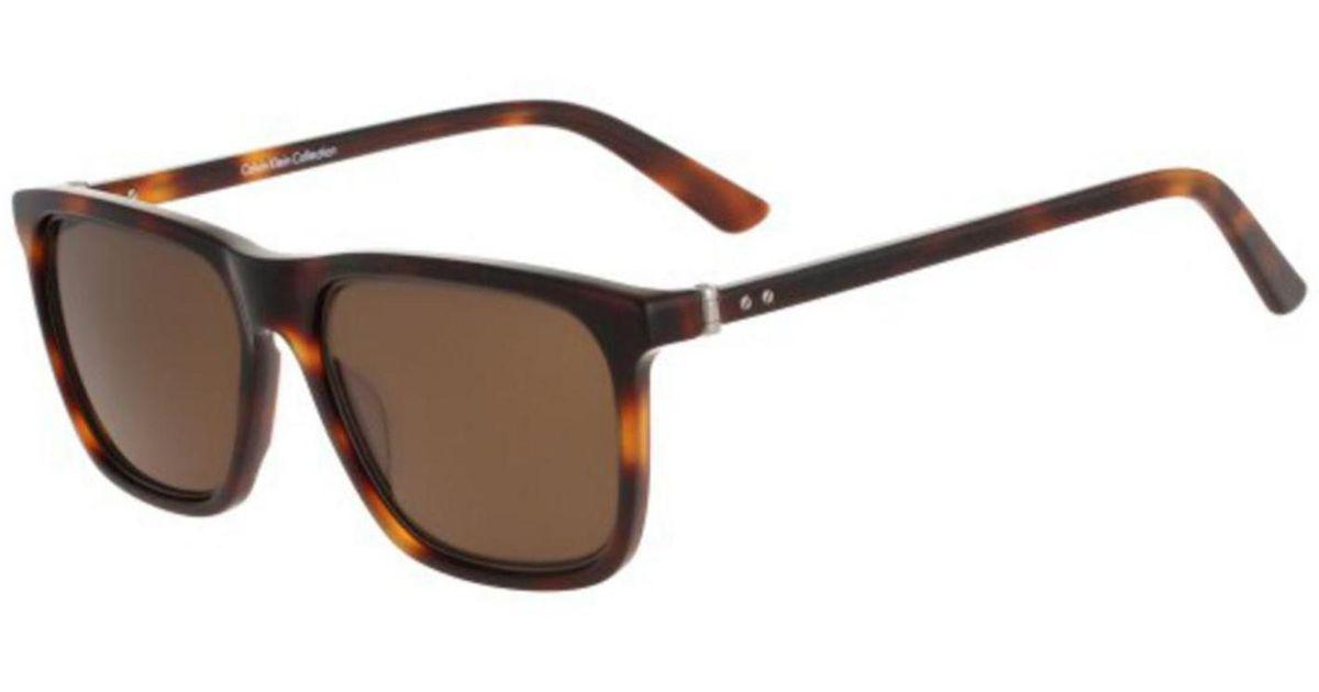 084e2ab75 Lyst - CALVIN KLEIN 205W39NYC Sunglasses Ck8502s / Frame: Tortoise Lens:  Brown in Brown for Men