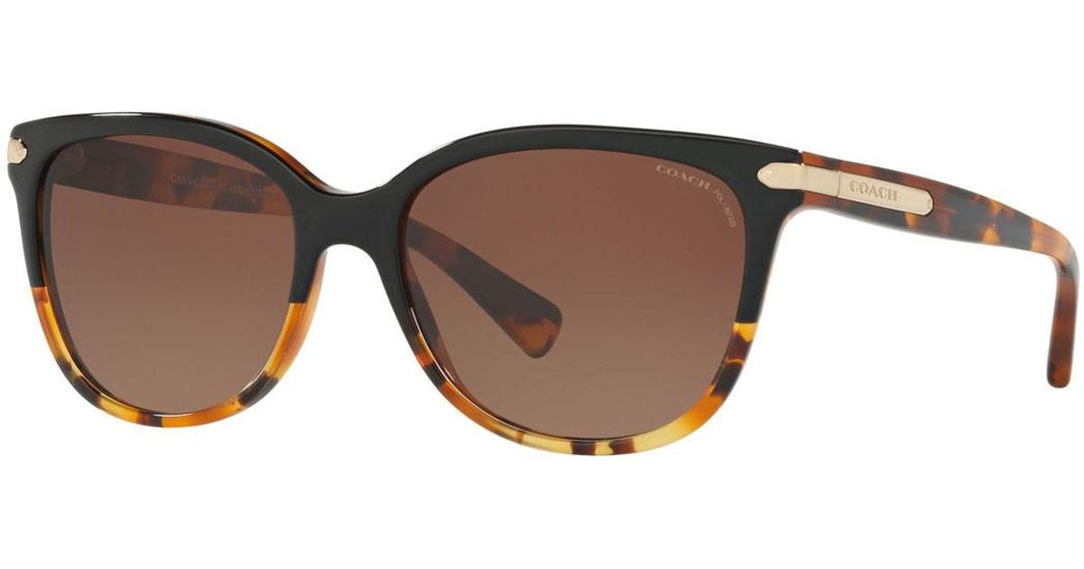 3b5c6d77e57fa Lyst - COACH Cat-eye Sunglasses W  Logo Plate Temples in Brown - Save 18%