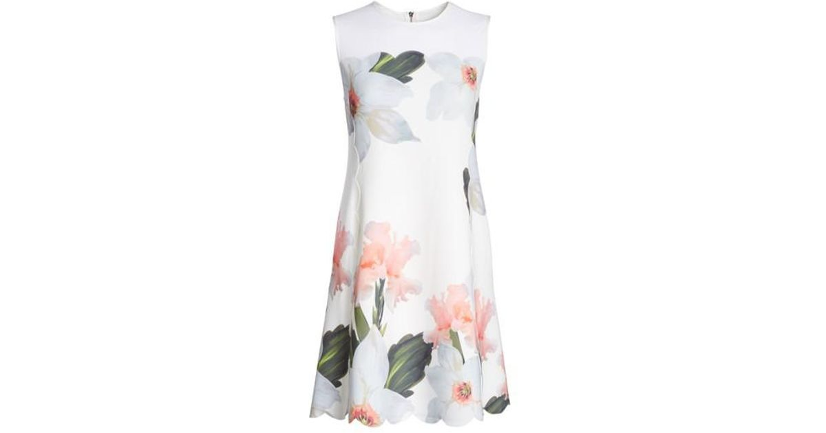 3ca53bd1d3c Lyst - Ted Baker Chatsworth Bloom Scallop Dress in White