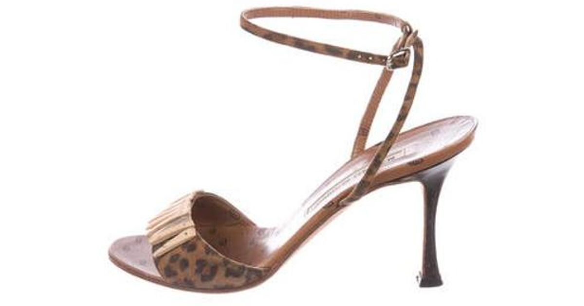 93bc3537d02 Sam Edelman Yaro Leopard Print Brahama Hair Ankle Strap Block Heel Save