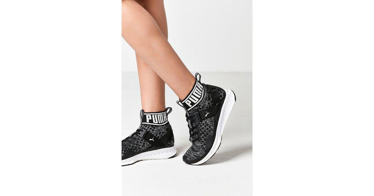 7c6b0009db17 PUMA Ignite Evoknit Training Sneaker in Black - Lyst