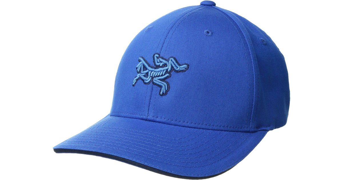 ebe57320d82 Lyst - Arc teryx Embroidered Bird Cap (heron) Caps in Blue for Men