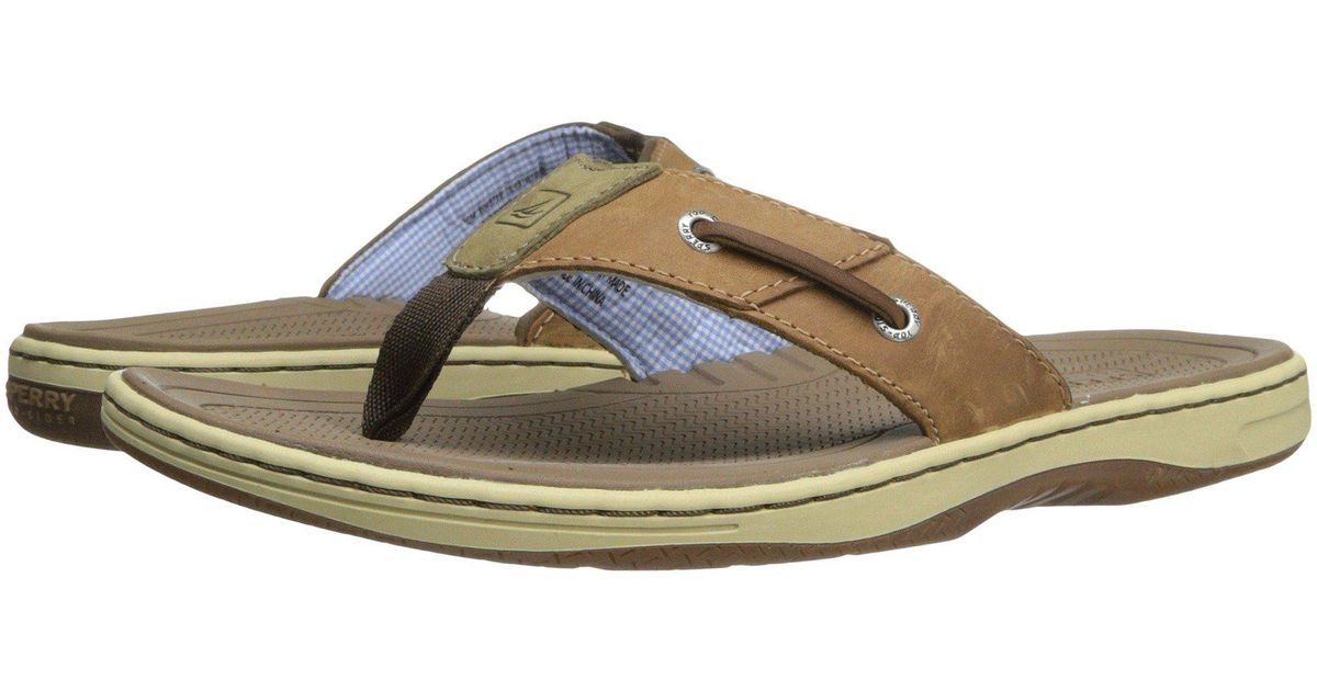 e4c58337fce Lyst - Sperry Top-Sider Baitfish Thong (brown) Men s Sandals in Brown for  Men