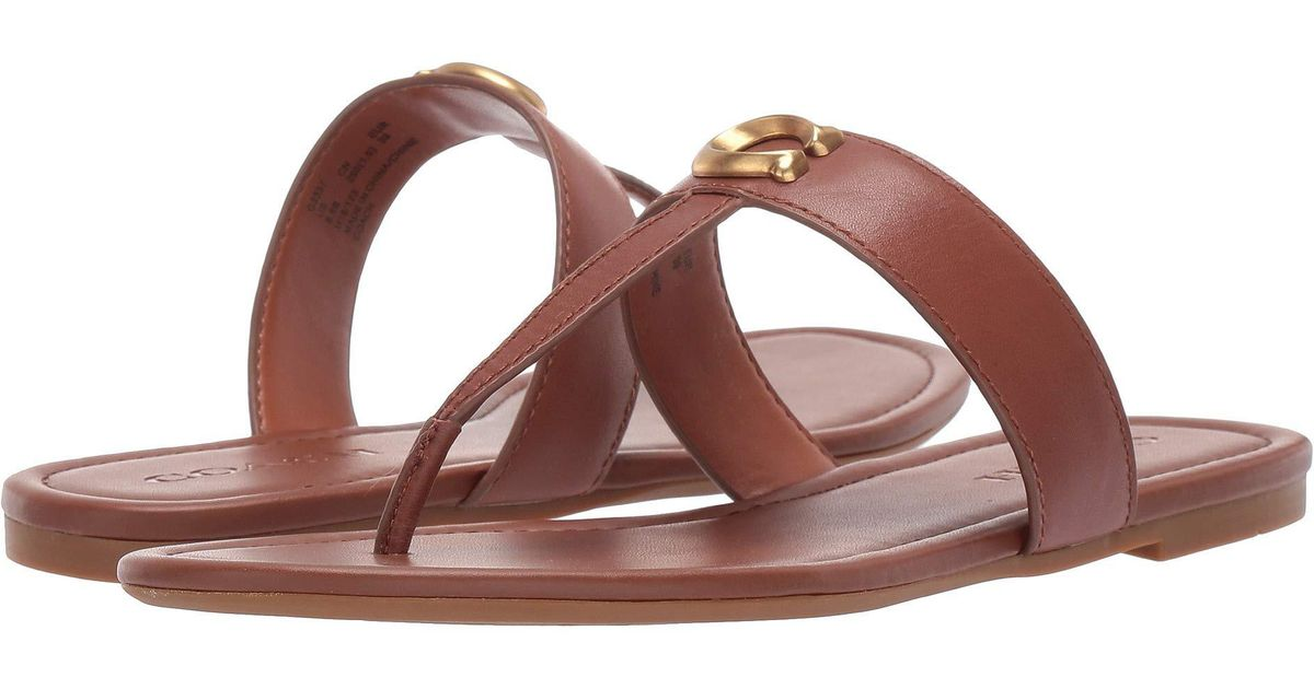 16e749503 Lyst - COACH Jessie Thong Sandal With Signature Buckle (black Leather) Women s  Sandals