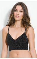 Free People Burnout Velvet Crop Camisole - Lyst