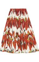 Dolce & Gabbana Chili Pepper Print Cotton Poplin Skirt