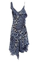 Roberto Cavalli Leopard Print Silk Georgette Dress