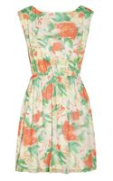 Alice + Olivia Matilda Floral-Print Silk-Georgette Dress