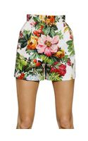 Dolce & Gabbana Printed Stretch Cotton Drill Shorts