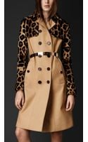 Burberry Mink Gabardine Trench Coat