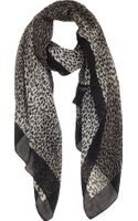 Saint Laurent Baby Cat Leopardprint Scarf - Lyst
