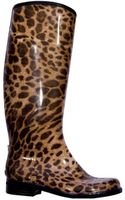 Dav English Leopard in Black - Lyst