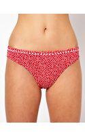 Freya Calamity Hipster Bikini Bottom - Lyst
