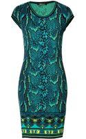 Roberto Cavalli Snake Print Knit Dress   - Lyst