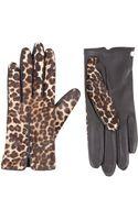 Lanvin Ponyhair Short Glove - Lyst