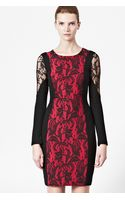 French connection Lavinia Lace Panel Dress - Lyst