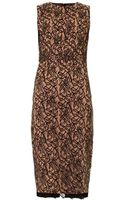 Camilla & Marc Lace Front Fitted Dress - Lyst