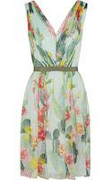 Matthew Williamson Cactus Garden Printed Silk Chiffon Dress - Lyst