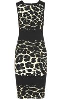 Roberto Cavalli Animalprint Stretchjersey Dress - Lyst