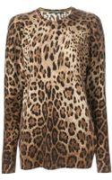 Dolce & Gabbana Leopard Print Sweater - Lyst