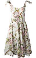 Dolce & Gabbana Flared Floral Print Dress - Lyst