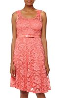Chetta B Lace Bow Belt Dress - Lyst