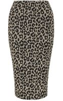 Atterley Road Leopard Print Pencil Skirt - Lyst